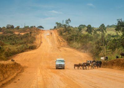 Oeganda_road