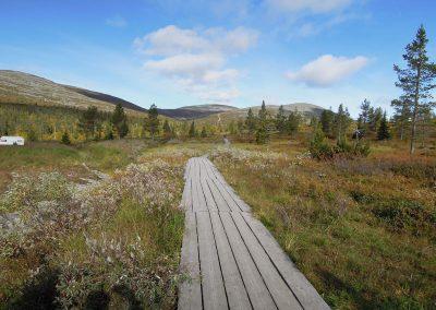 Zweeds-Lapland