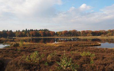 Wandelen met Hike in Holland
